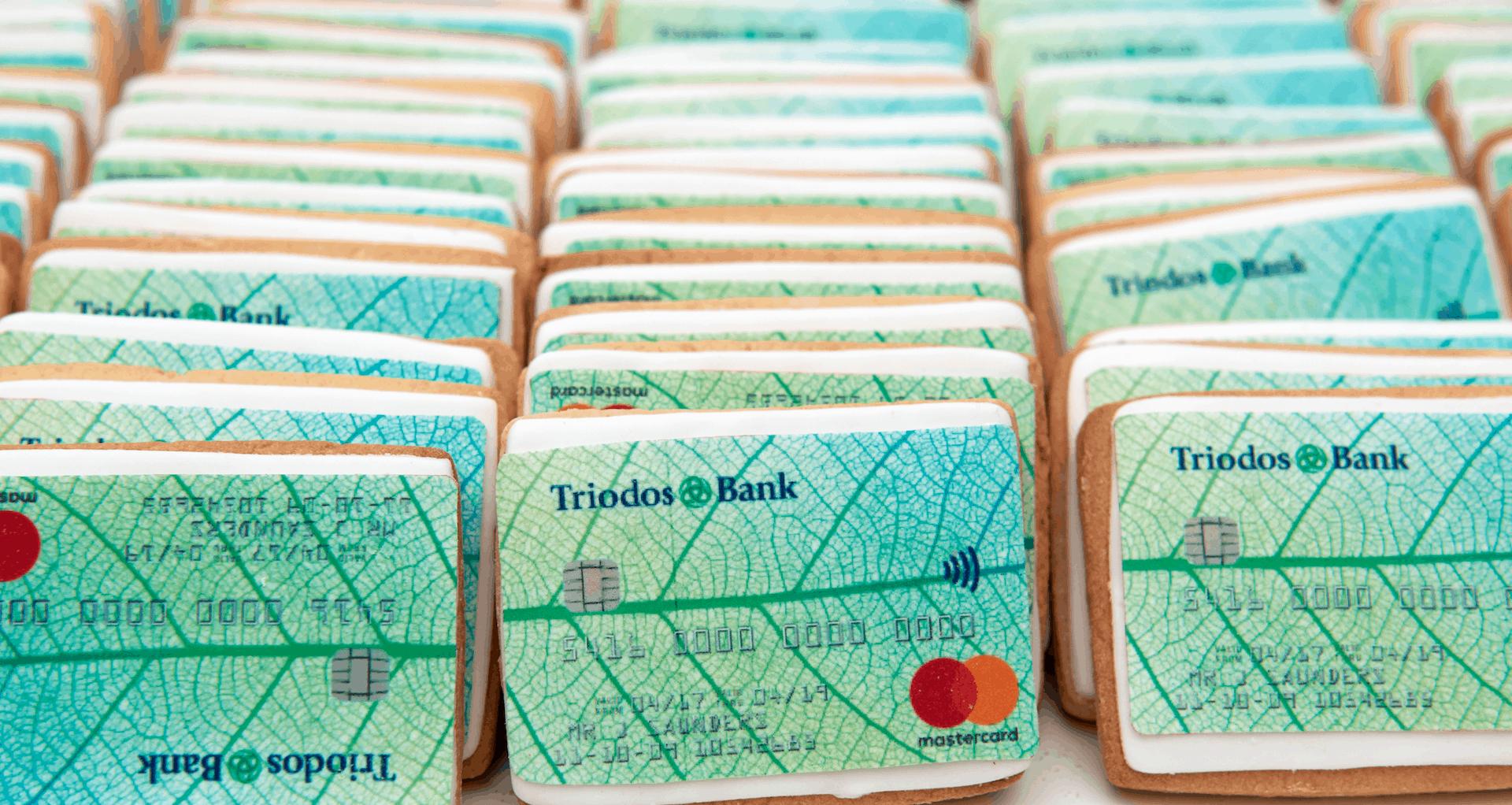 Triodos bank review